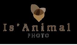 Is'Animal Photo